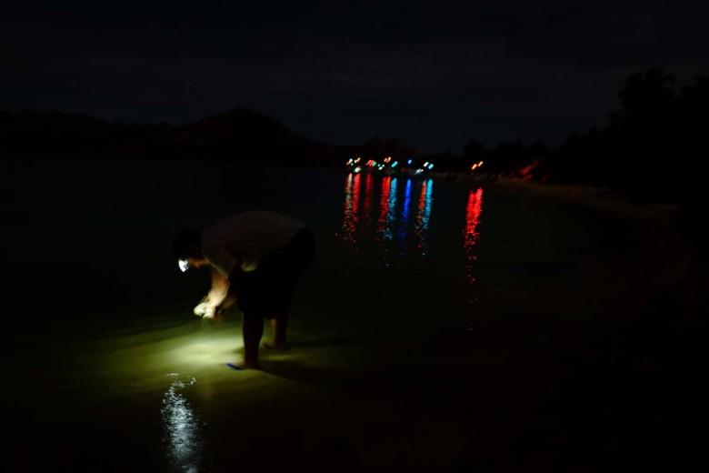 disco_fishing_boats